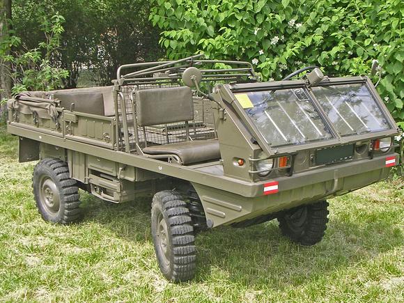 Resultado de imagen para army Haflinger